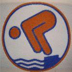 Schwimmen Logo Schwimmabzeichen Bronze