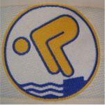 Schwimmen Logo Schwimmabzeichen Gold