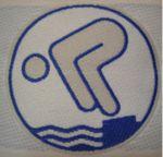 Logo Schwimmabzeichen Silber